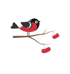 Bullfinch on the branch of mountain ash in flat vector image vector image