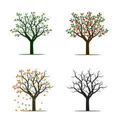 for season trees vector image vector image