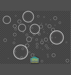white water bubbles with reflection set on vector image