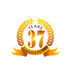 37 years ribbon anniversary vector image