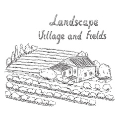 A vineyard field and village vector