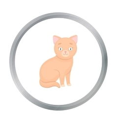 Cat icon of for web and mobile vector image vector image