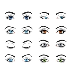 Set of female eyes and brows image vector