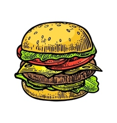 Burger include cutlet tomato cucumber and salad vector