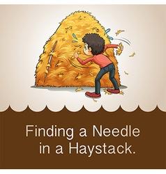 Finding needle in haystack vector