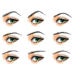Nine different eyebrows set vector