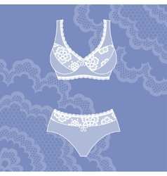 Fashion female lingerie with vintage lace ornament vector