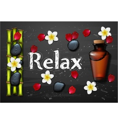 Spa background with stone spa bottle vector