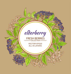 Elderberry frame vector
