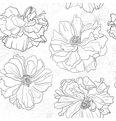 Hand drawn floral wallpaper with poppy flowers vector image vector image