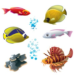 tropical fishes vector image vector image