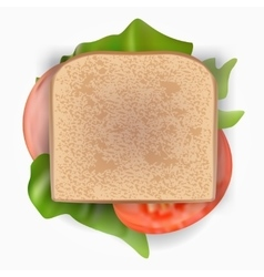 Ham and vegetable sandwich in transparentbag vector