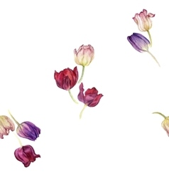 seamless pattern with watercolor tulip vector image