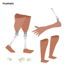 Set of Prosthetic Leg Knee and Arm vector image vector image