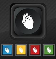 Human heart icon symbol set of five colorful vector