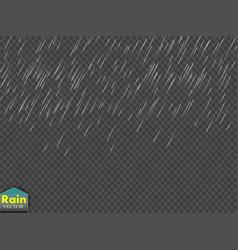 rain transparent template background falling vector image vector image
