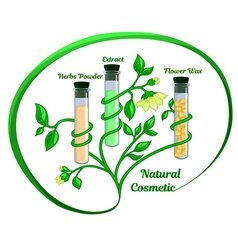 The natural cosmetic vector