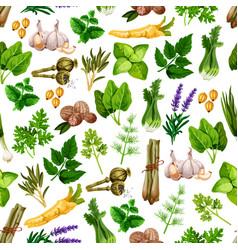 Seamless pattern of spice herb seasonings vector