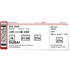 airline boarding pass tickets to plane for travel vector image vector image
