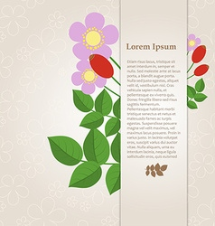 Floral composition with rose hips on a beige vector