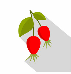 Ripe berries of a dogrose icon flat style vector