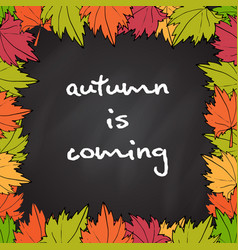 chalkboard with autumn maple leaves vector image