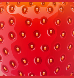 realistic strawberry background texture vector image