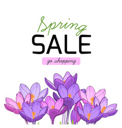 Spring sale shopping purple violet crocus flowers vector