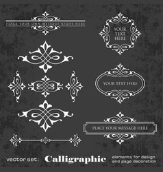 calligraphic elements for design on chalkboard vector image vector image