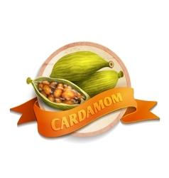 Cardamom ribbon badge vector
