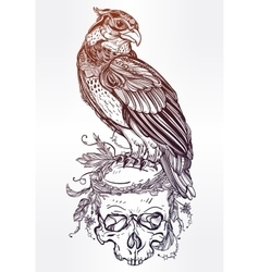 Detailed hand drawn bird of prey on a skull vector