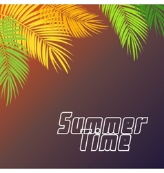 Summer time palm leaf background vector