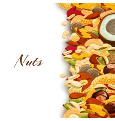Nuts mix background vector