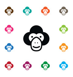 Isolated chimp icon capuchin element can vector