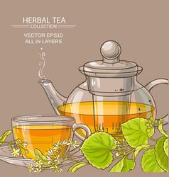 linden tea background vector image vector image