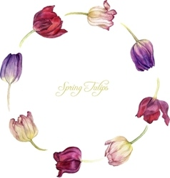 Round frame with watercolor tulip vector