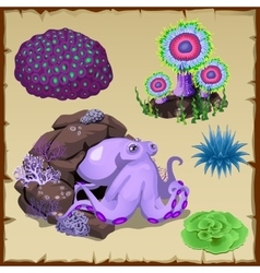 Set of purple octopus and underwater vegetation vector