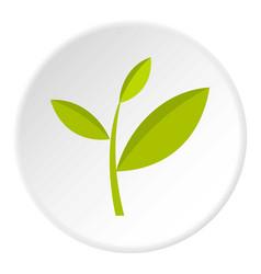 Tea plant icon circle vector