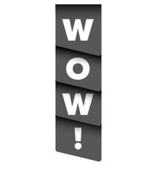 Wow message ribbon vector