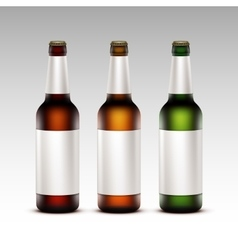 Set of Bottles Dark Beer with White labels vector image