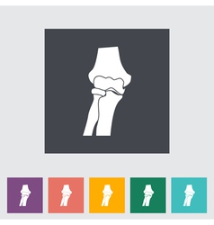 Knee joint vector