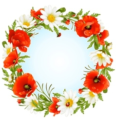 Camomile and poppy frame vector