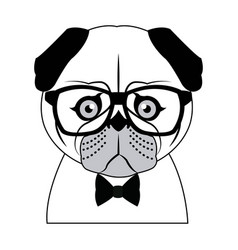 portrait of a pug dog in glasses and a bow tie vector image vector image