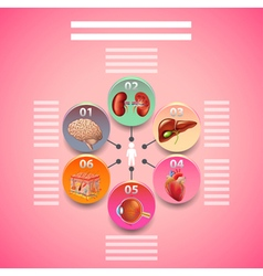 Science infographics with human organs in circles vector