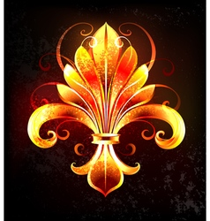 Fire Lily vector image vector image