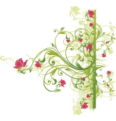 floral vine graphic vector image vector image