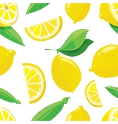 Lemon slices citrus seamless pattern vector image vector image