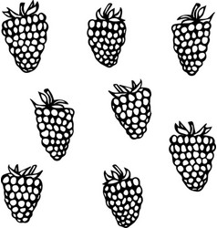 Raspberry doodle style sketch isolated on vector