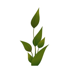 A view of plant vector image vector image