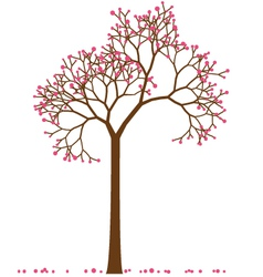 Cherry tree vector